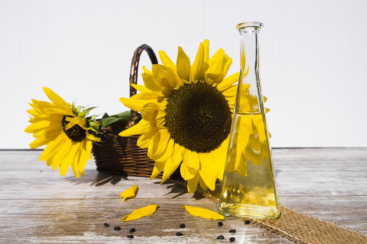 Olej rzepakowy czy słonecznikowy?